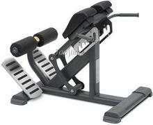 Master Sport Maszyna Do Ćwiczeń Mięśni Grzbietu Bml 11 Mastersport