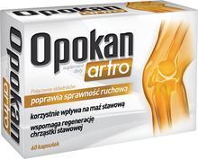 Aflofarm Opokan Artro 60 szt.