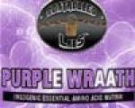 Controlled Labs Purple Wraath 945g