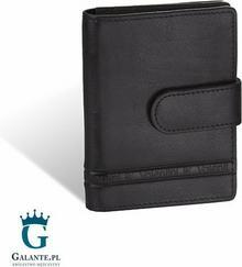 Valentini Etui na karty i wizytówki 152-013 RFID