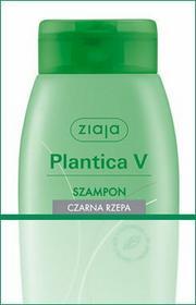 Ziaja Plantica V: szampon Czarna Rzepa 200ml