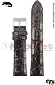 Tekla Pasek TK040BR/20 - brązowy, skóra krokodyla