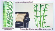 Naklejka Kolorowe Bambusy nr 1