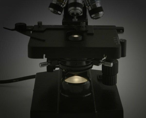 Mikroskop biologiczny levenhuk  u ceny dane techniczne