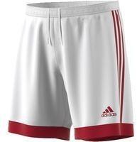 adidas Spodenki piłkarskie Tastigo 15 M S22356 XL S22356*XL