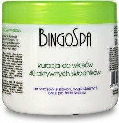Bingo Kuracja z 40 aktywnymi składnikami do włosów 500G