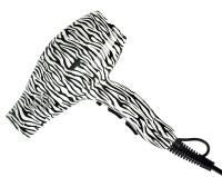 Fox Art Zebra