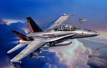 Revell 04064 F/A-18 D Hornet Wild Weasel 1:144