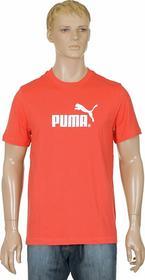 Puma Large Logo