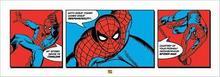 Spider-man (Triptych) - reprodukcja