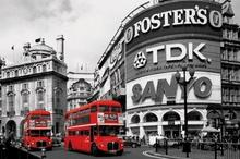 Piccadilly Circus (London Red Buses) - plakat