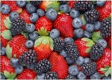 Berries - reprodukcja
