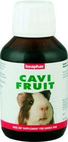 Beaphar CAVI FRUIT NAGER 100ML-PREPARAT WITAMINOWY DLA GRYZONI 265-011354-00