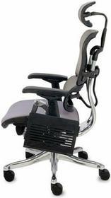 Grospol Fotel ergonomiczny Ergohuman Plus KMD30, szary - szary KMD30