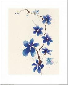 Orchidea, Storczyk - Obraz, reprodukcja