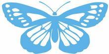 Szabloneria Naklejka fauna 12 - motyl
