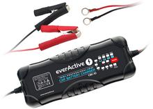 everActive CBC-10