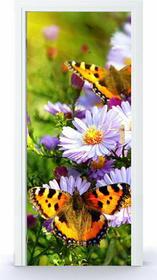 Oklejaj Naklejka na drzwi - Motyle na łące 0034