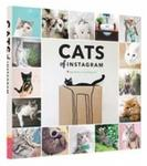 Opinie o @cats_of_instagram Cats on Instagram