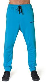 Horsefeathers Bielizna termoaktywna RECALL PANT (blue)