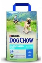 Purina Dog Chow Puppy Large Breed Turkey 3 kg