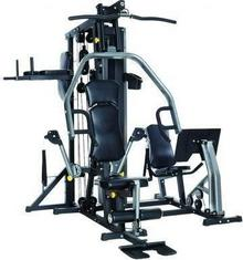 Horizon fitness Torus 5- Multi-Station