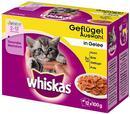 Whiskas Junior w saszetkach 24 x 100 g Wybór dań mięsnych w sosie