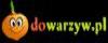 dowarzyw.pl