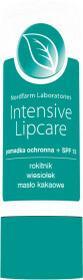 Nord FARM SP.Z O.O. FARM Pomadka ochronna Intensive Lipcare, 3,6g