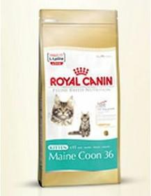 Royal Canin Maine Coon 36 0,4 kg