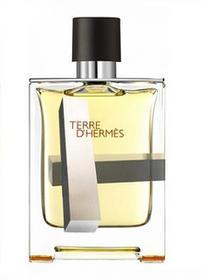 Hermes Terre DHermes Perspective Woda toaletowa 100ml TESTER