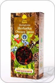 Dary Natury Ekologiczna Herbatka Owoce Lasu 100g