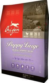 Orijen Puppy Large 6,8 kg
