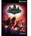 Pillars of Eternity: Champion Edition STEAM
