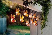 Weltbild Łańcuch świetlny Motyle