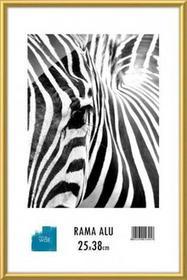 Rama aluminiowa 25x38 cm