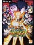 Naruto Shippuden: Ultimate Ninja Storm Revolution PL STEAM