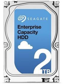 Seagate Enterprise Capacity ST2000NM0055