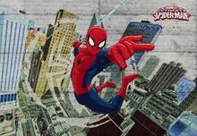 Spider Man Marvel - fototapeta