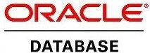Oracle STANDARD EDITION ONE 1 NUP SUPPORT