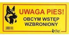 Dingo Tabliczka ostrzegawcza Uwaga pies! Obcym wstęp wzbroniony 13079