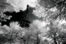 Tour Eiffel (David Noton) - plakat