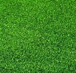 Belgia Sztuczna trawa Spring
