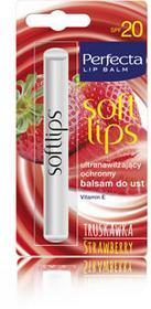 DAX Cosmetics Ultranawilżający ochronny balsam do ust truskawkowy, 2g