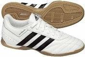 Adidas Adiquestra IN G19508 biały