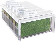 Emsa Pudełko na zioła 6 sztuk Herbs Spice Box 509262