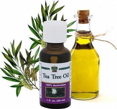 coral club tea tree oil