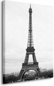 Paryż, Wieża Eiffel - Obraz na płótnie