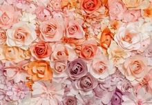 Kolorowe Róże - fototapeta