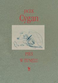 Jacek Cygan Pies w tunelu